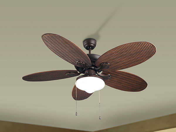 designer fan with light