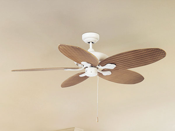 designer fan without lights