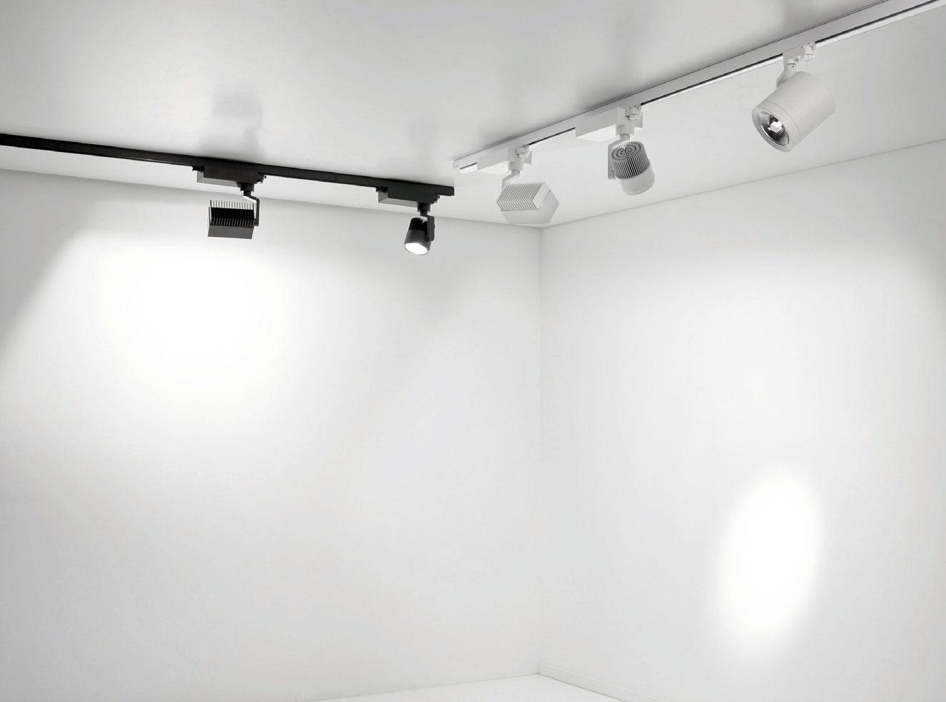 Action Spotlight